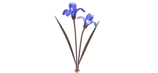 GX-9529-Costco-Iris(blue)